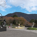 箱根彫刻の森