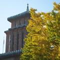 日本大通りの銀杏と県庁@APO-LANTHAR 90mm