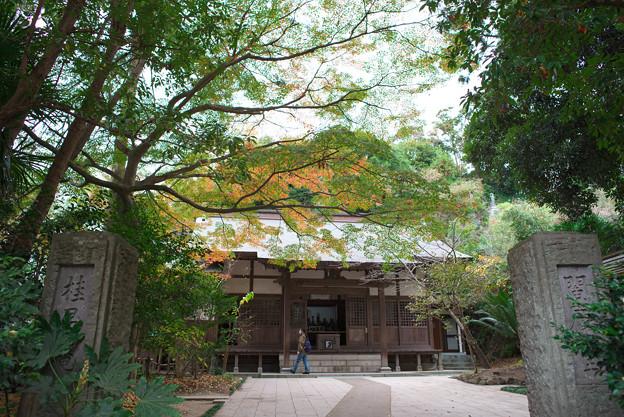 円覚寺・十王堂(桂昌庵)