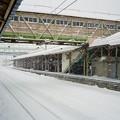 Photos: 雪の大館駅