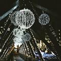 Photos: 函館駅前のイルミネーション
