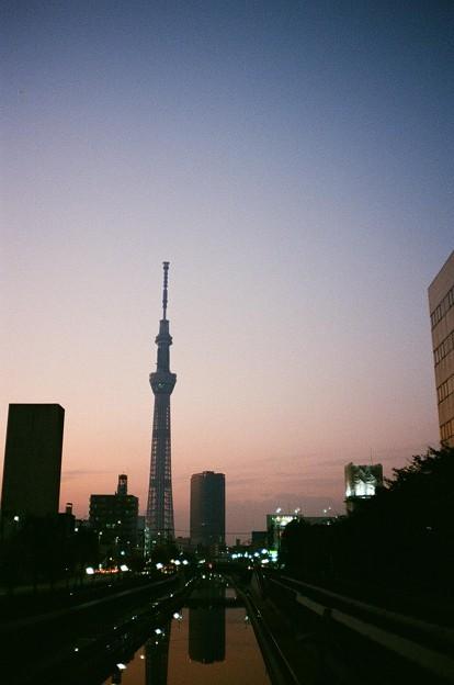 Photos: 夕暮れスカイツリー