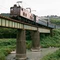 Photos: 大井川鉄道ED501