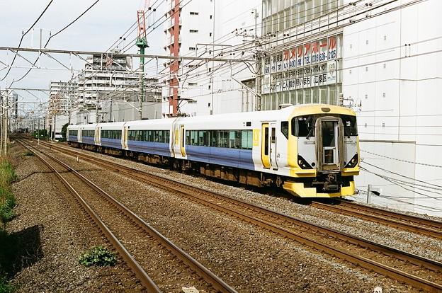 E257系500番台「新宿さざなみ」
