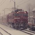雪の中を行く奥羽本線629レ