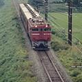 奥羽本線の普通列車