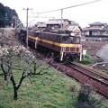 Photos: 三岐鉄道ED45 9