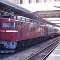 Photos: 24系団体臨時列車と「ムーンライトえちご」