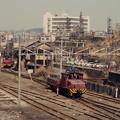 Photos: 宮浦駅