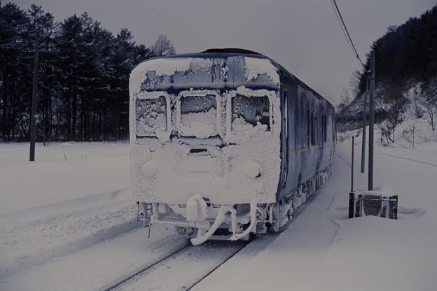 雪まみれのカニ24(「北斗星ニセコスキー」)