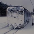 Photos: 雪まみれのカニ24(「北斗星ニセコスキー」)