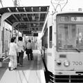Photos: 昼下がりの三ノ輪橋