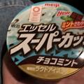 Photos: 明治製菓の明治エッセルスーパーカップチョコミント