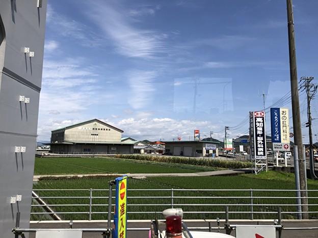 高知県へ着きました