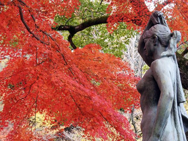紅葉と彫刻