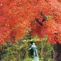 Photos: 紅葉と彫刻2