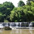 写真: 黒滝