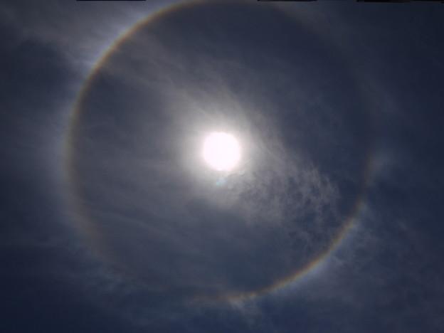 またも彩雲状暈雲 2009.5.20  12h32mi