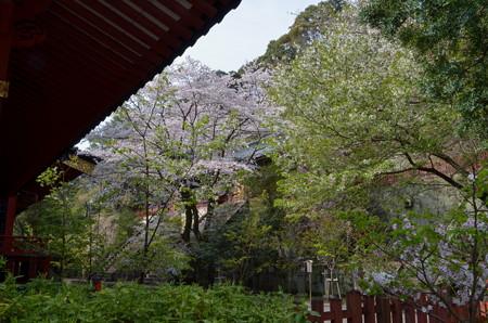 静岡浅間神社・本殿