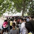 杭州西湖景区迎来八方?客。