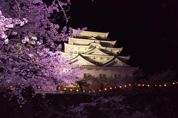 【福山城の桜】7