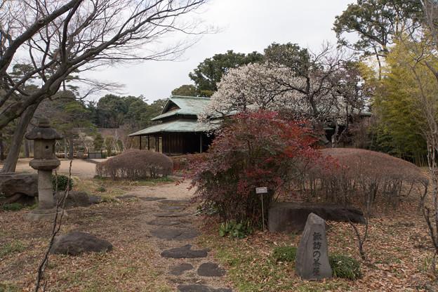 皇居東御苑【諏訪の茶屋】