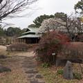 写真: 皇居東御苑【諏訪の茶屋】