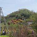 Photos: 東北お花見ツアー【花見山公園が見えてきました】