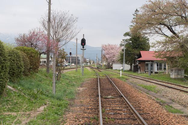 東北お花見ツアー【フラワー長井線の桜】