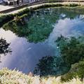 Photos: 富士五湖巡り【忍野八海】3