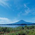 富士五湖巡り【河口湖自然生活館:富士とジニア】