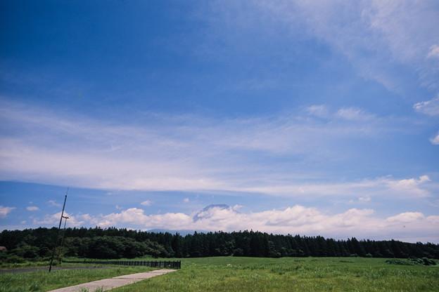 富士五湖巡り【朝霧高原から見る富士】1