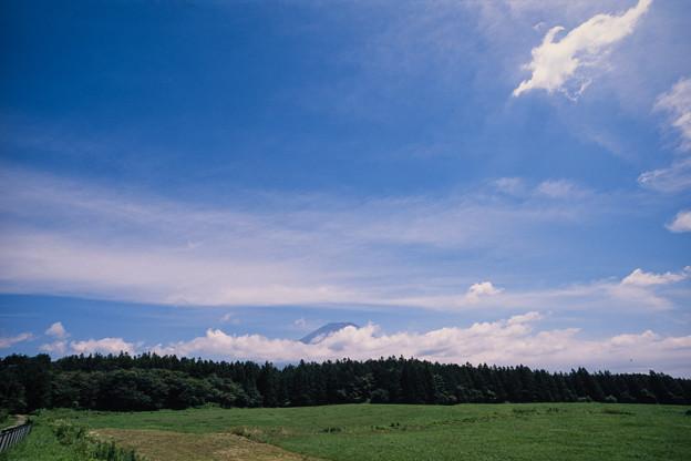 富士五湖巡り【朝霧高原から見る富士】2