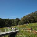 写真: 里山ガーデン【大花壇の様子】1