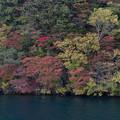 Photos: 東北紅葉狩り【十和田湖の紅葉】3