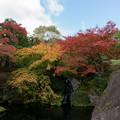 箱根美術館【庭園内の紅葉】3
