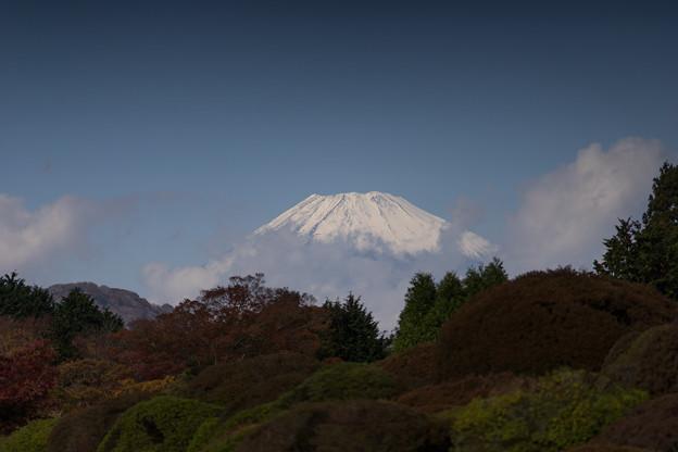 上のホテル【富士山のアップ】