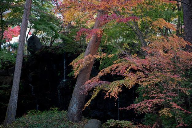 河口湖【久保田一竹美術館の紅葉】