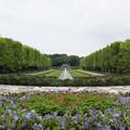 昭和記念公園【7月のカナール】