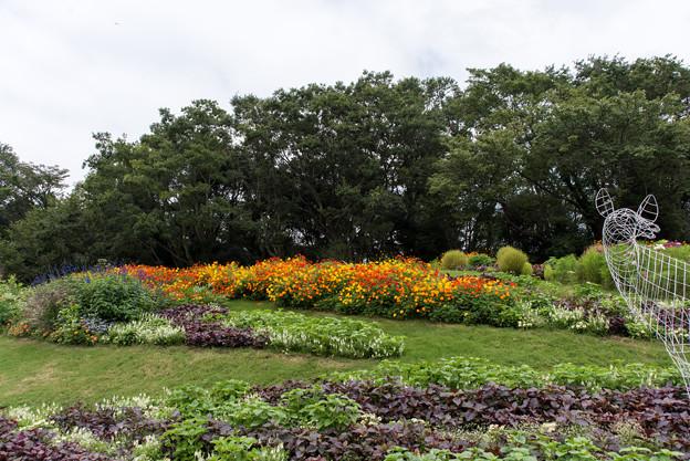 里山ガーデン【大花壇の眺め】3