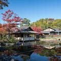 Photos: 昭和記念公園【日本庭園:紅葉】1-6