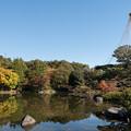 Photos: 昭和記念公園【日本庭園:紅葉】1-7