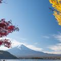 河口湖【富士山と紅葉】1