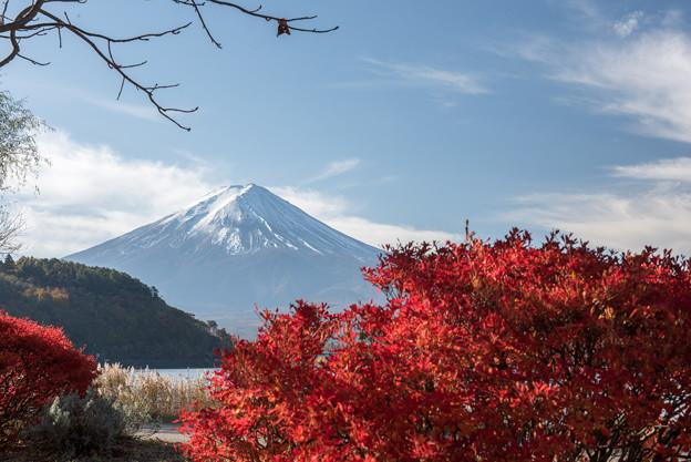 河口湖【富士山と紅葉】2