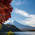 河口湖【富士山と紅葉】3