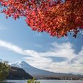 河口湖【富士山と紅葉】4