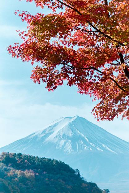 河口湖【富士山と紅葉】7銀塩