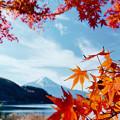 Photos: 河口湖【富士山と紅葉】8銀塩