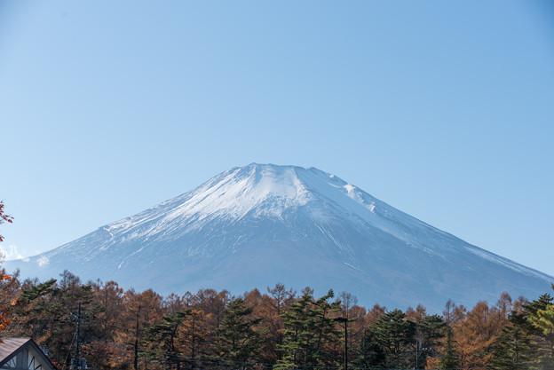 山中湖【富士山と紅葉】2