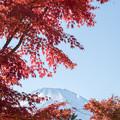 山中湖【富士山と紅葉】5